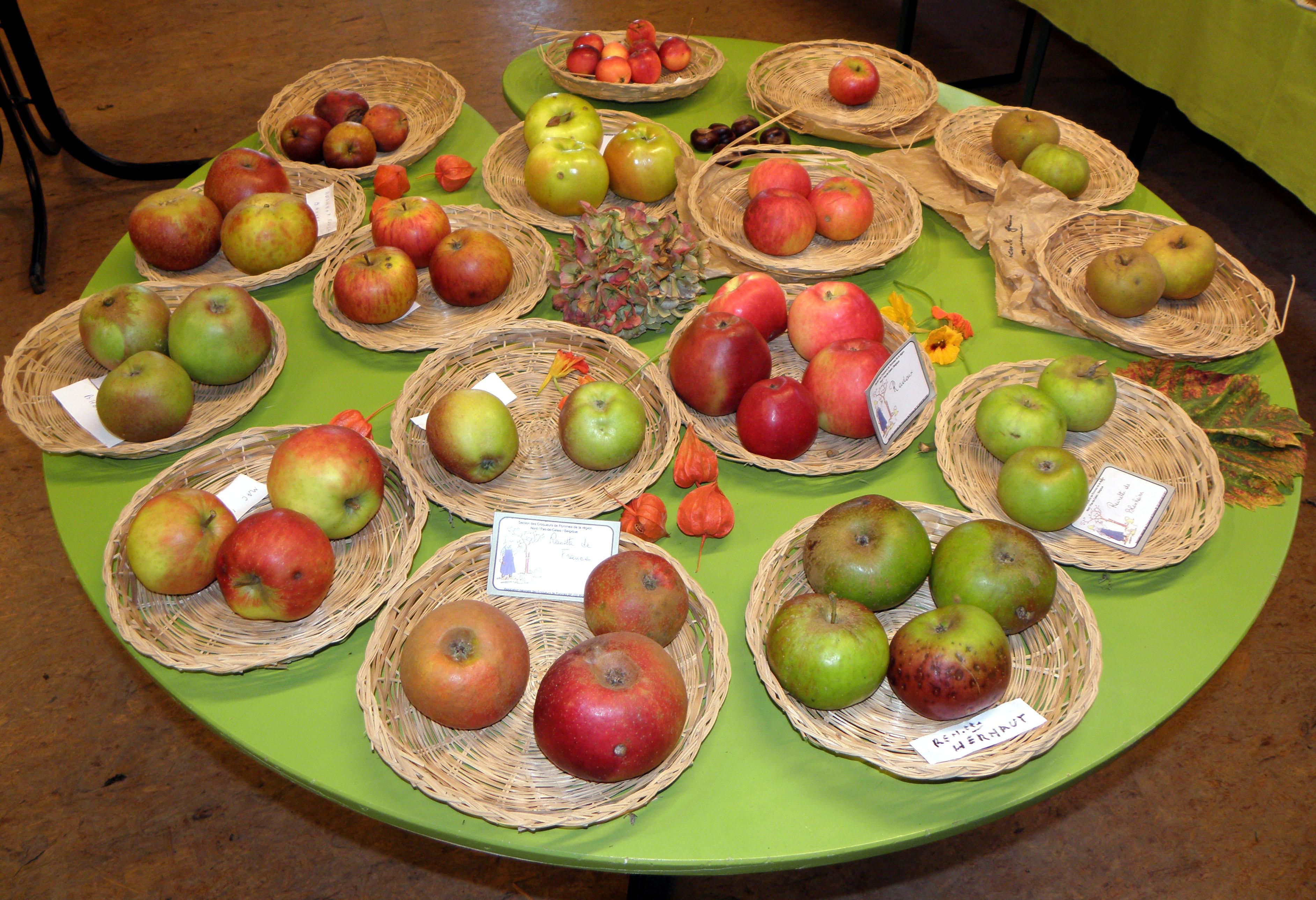 Foire aux pommes de l'Aquascope