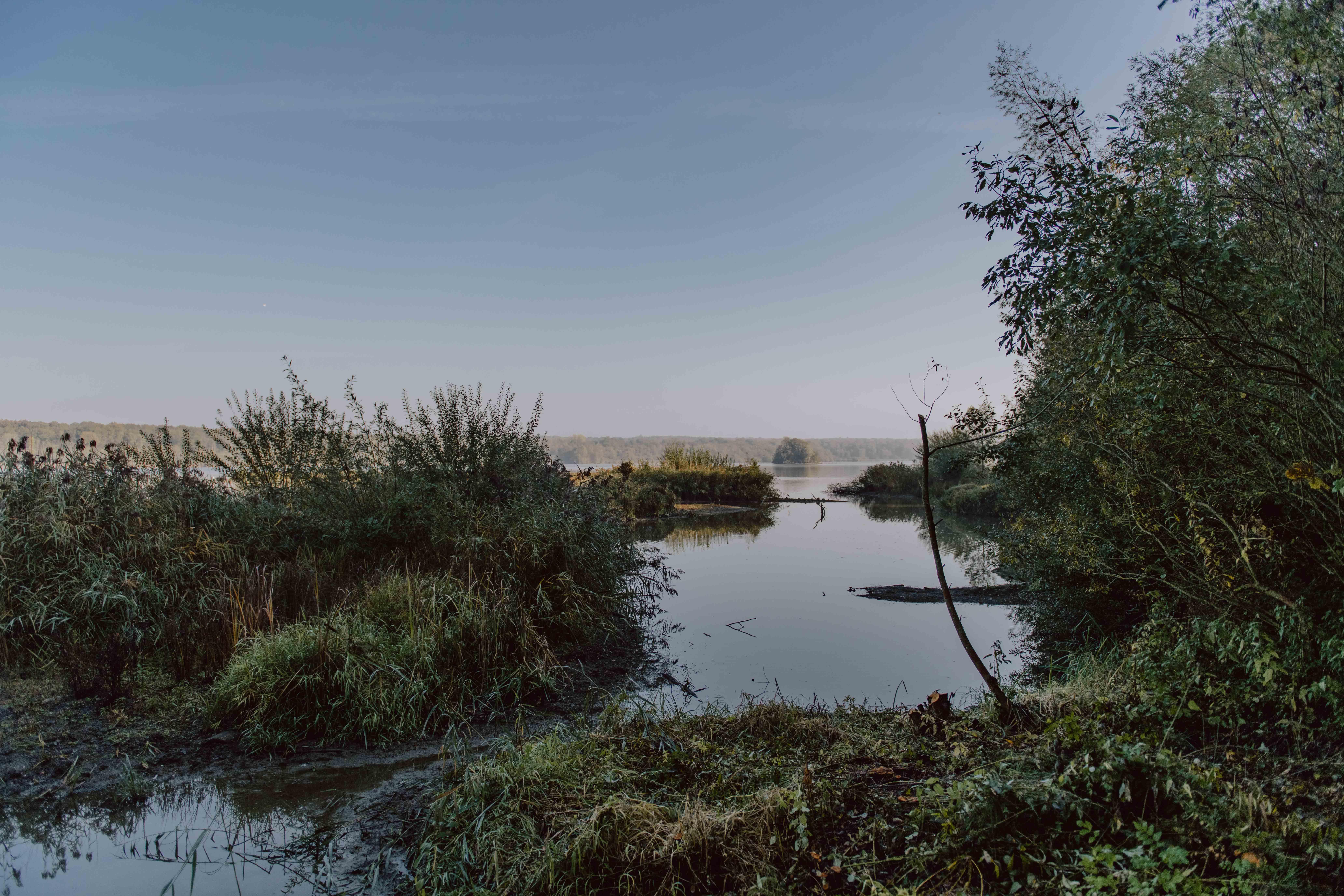 Balade autour de l'étang de Virelles