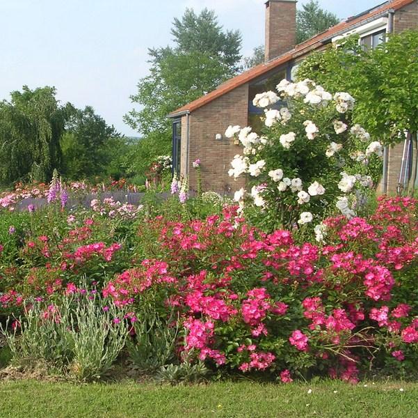 Jardins ouverts 2014 à Chaumont-Gistoux